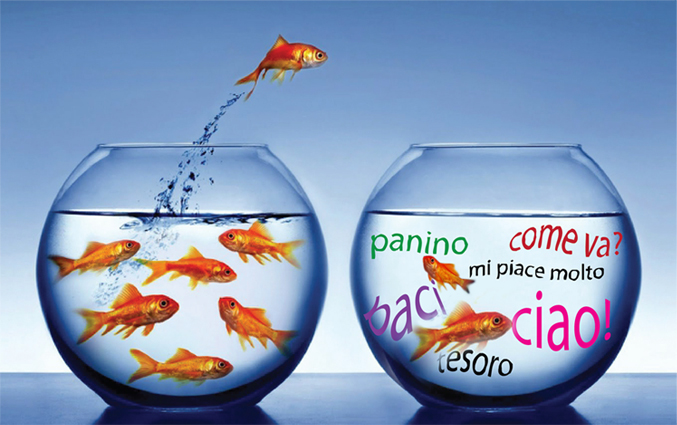 Total language immersion - goldfish bowl
