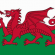 St David's Day EFL Lesson – Exploring Welsh Culture