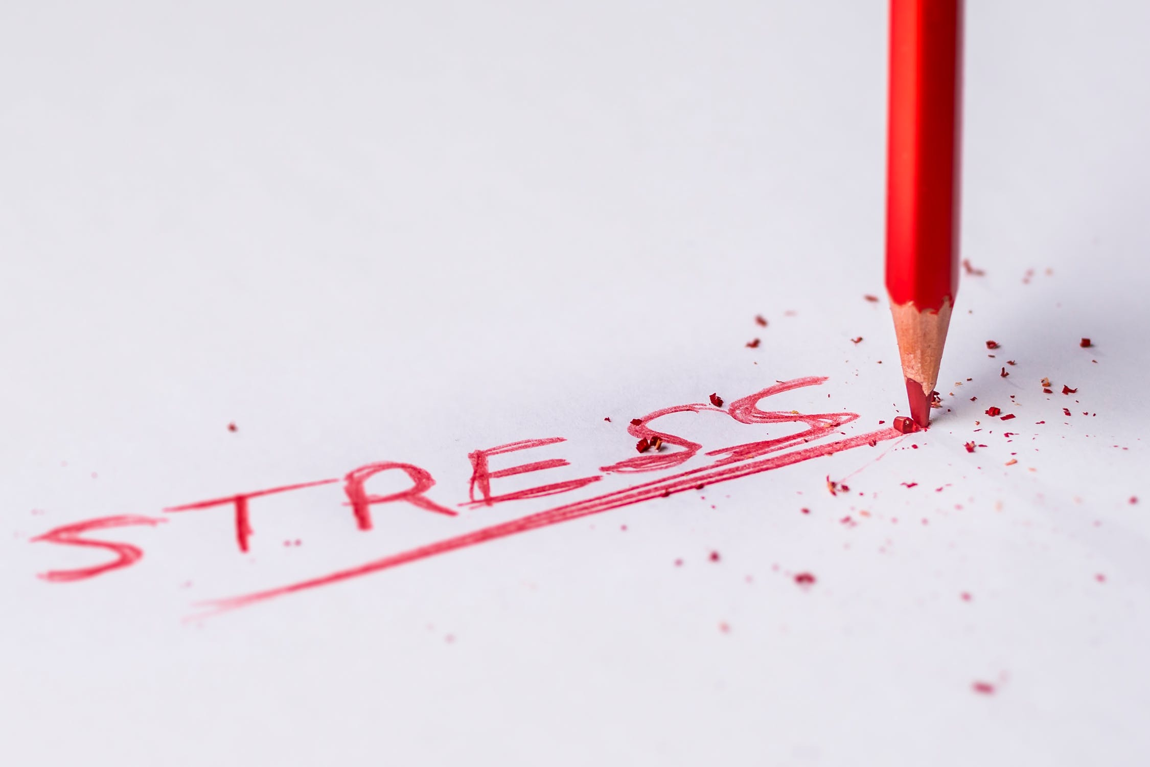Syllables and Stress Patterns in English - Word Stress